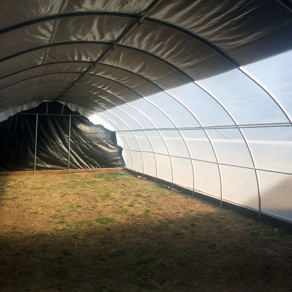 Jiggly Greenhouse® Zebra Black/White Plastic Greenhouse Light Deprivation Film (4-Year, 6 Mil) - 32 ft. x 130 ft.