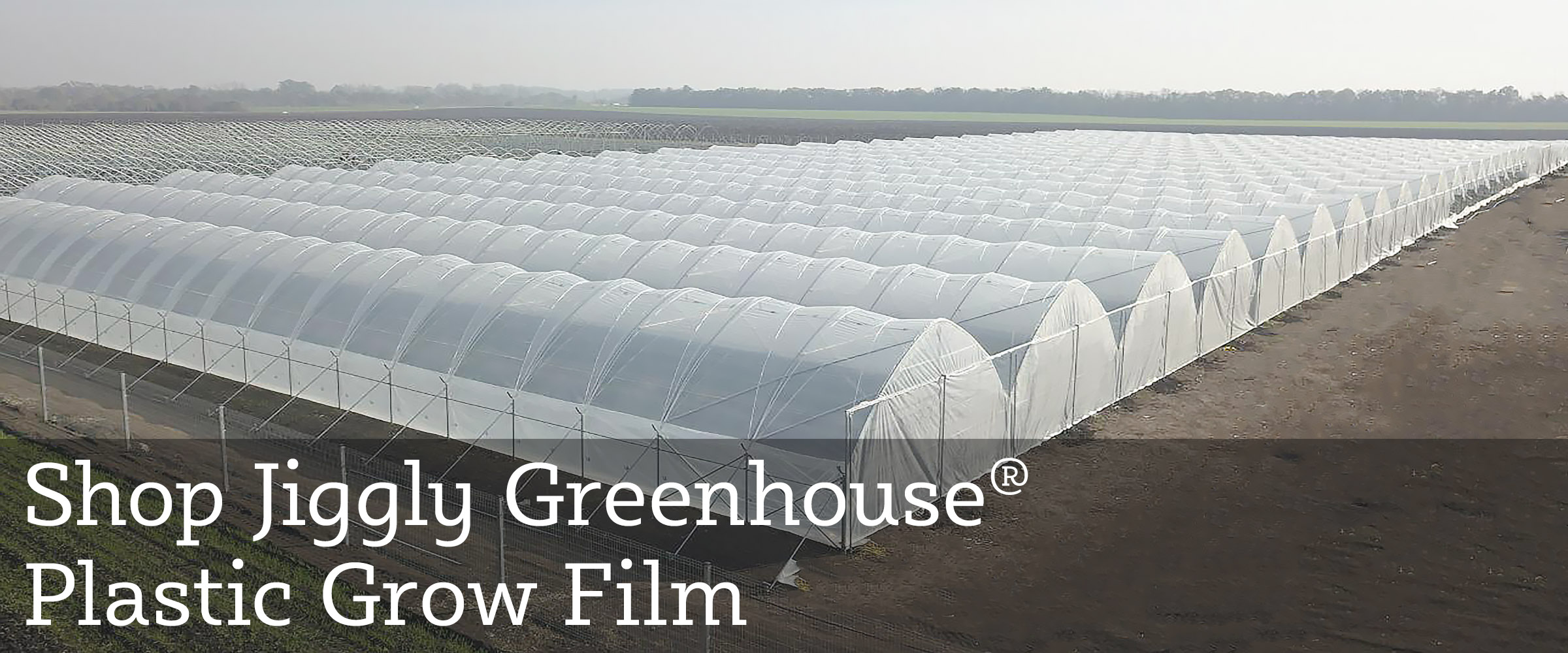 Check Out Our Jiggly Greenhouse Poly Plastic Greenhouse Grow Film!